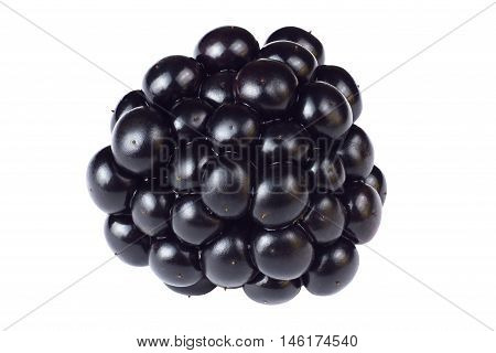 Blackberry isolated on white background. High resolution and depth of field Blackberry