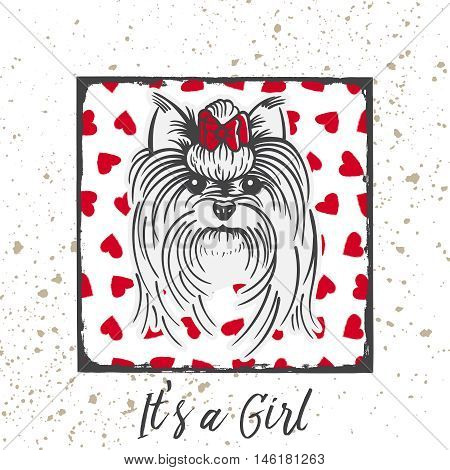 Yorkshire Terrier with a bow.Hand drawn portrait with the inscription-It s a Girl