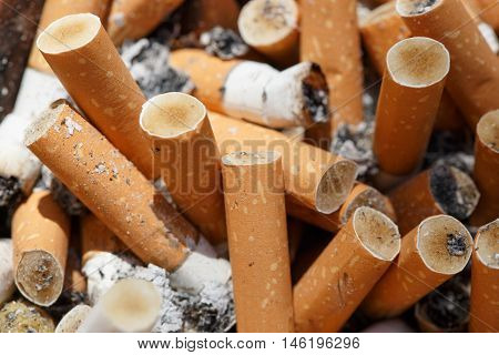 Big pile of put out cigarettes. Smoking smoker addiction health hazard lung cancer concept.