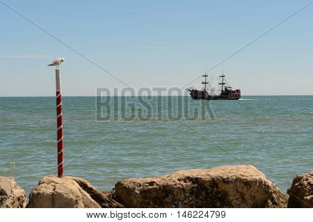 Old pirate ship and seagull near the coast - Italy