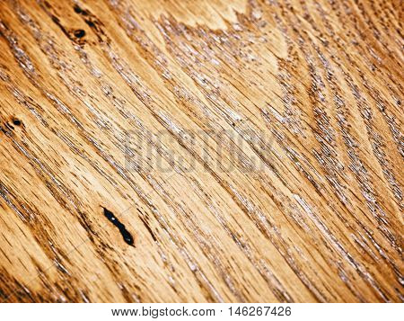warm brown oak wooden, close up background
