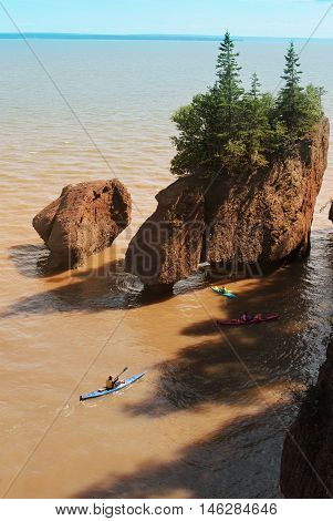 Kayakers At Hopewell Rocks