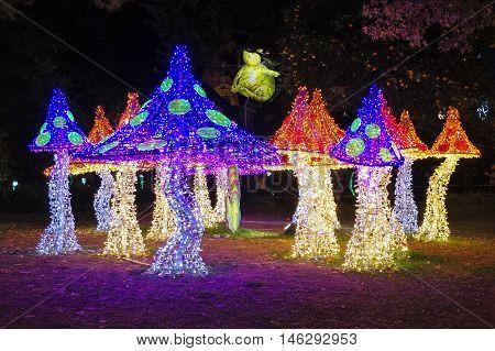 Christmas Lights Of Salerno