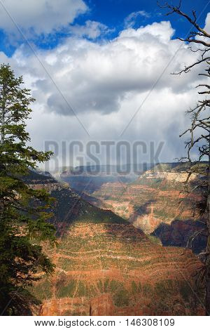 A storm over a valley of the Grand Canyon by Bright Angel Trail seen through a break in the trees at the North Rim.