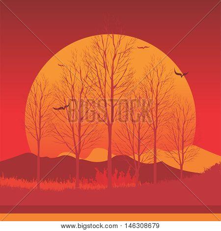 Vector Orange Sunset, Sunshine, Dusk, Twilight Illustration Background