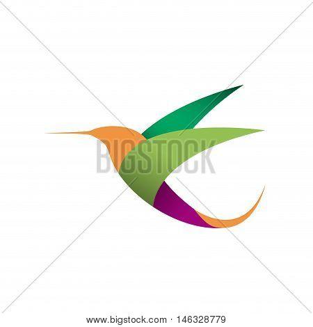 Vector sign bird in flight. Hummingbird, isolated illustration
