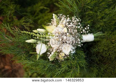 White Bouquet Of Eustoma With Ribbon On Green Background Outdoors. Birthday Or Romantic Gift For Gir