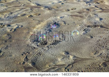 Bubbles On Sandy Beach. Westport, New Zealand.