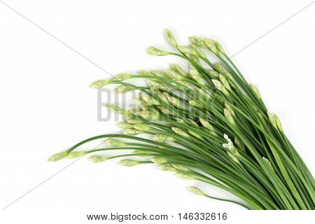 Kuicheai Vegetable leaves Thailand food frash isolated