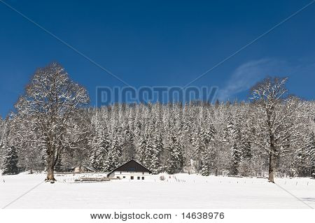 Lonely Chalet In Winter