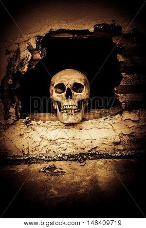 Human skull on breaking concrete wall in abandoned house,Horror Background For Halloween Concept And Movie Poster Project