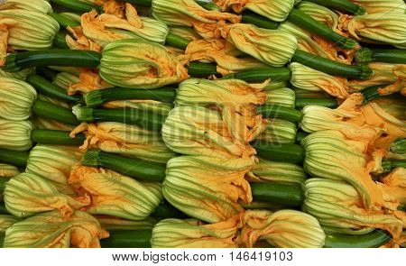 Fresh Baby Zucchini Florets from Farmer's Market