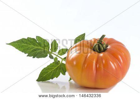 An isolated yellow and orange zebra heirloom tomato