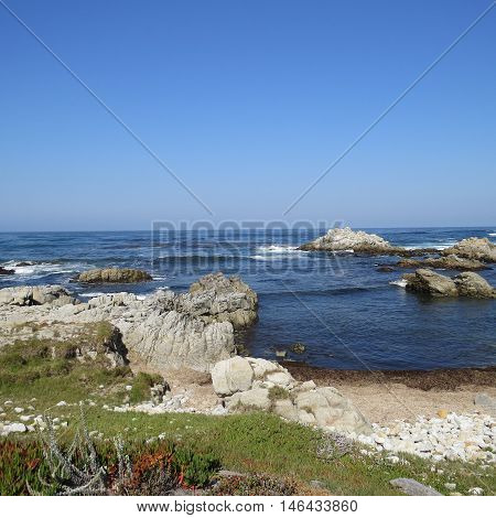 This is an image of Asilomar Beach in Pacific Grove, California, taken at low tide on a clear sunny day.