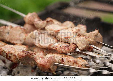 bbq shashlik pork meat outdoor food, shallow focus
