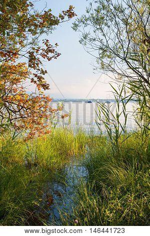 natural shore of starnberg lake bavaria in autumn