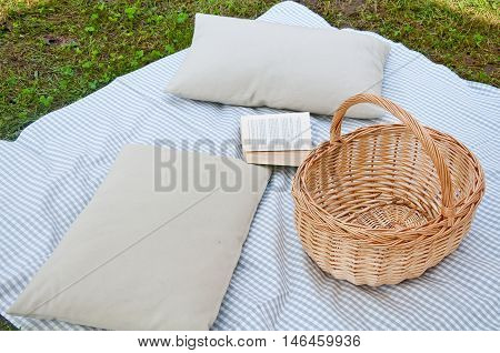 beautiful picnic with tablecloth pillows book and food basket dooritaly