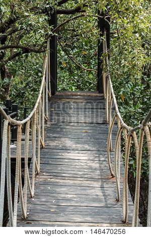 The Wooden bridge leading to tropical mangrove forest.
