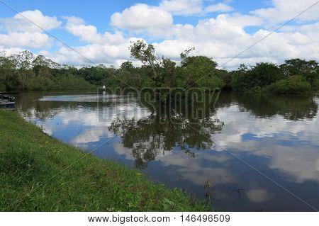 The Yacuma river. Bolivian jungle. Amazon region