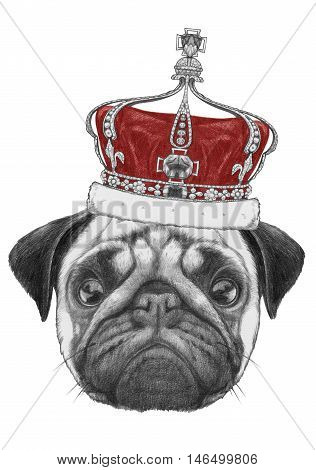 Original drawing of Pug Dog with crown.  Isolated on white background.