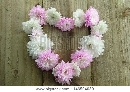 Close up of pink and white flowers in a heart shape on a wooden background