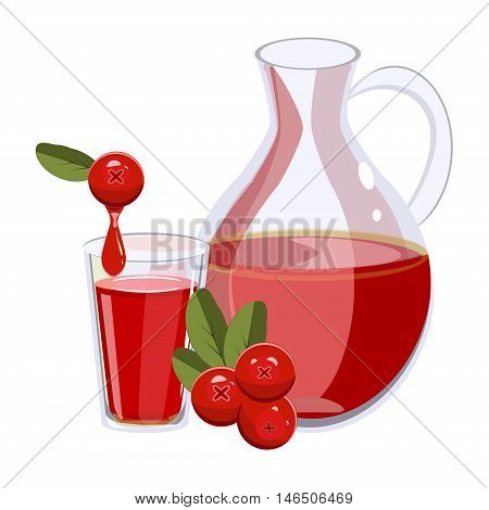 Wild northern cranberry red berries. Fruit food healthy cranberry isolated macro sweet bright ingredient. Fresh cranberry juice.
