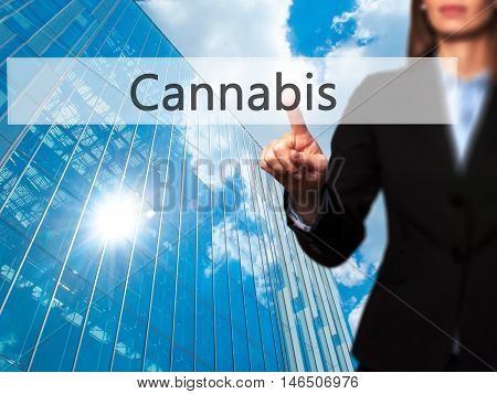Cannabis - Businesswoman Pressing Modern  Buttons On A Virtual Screen