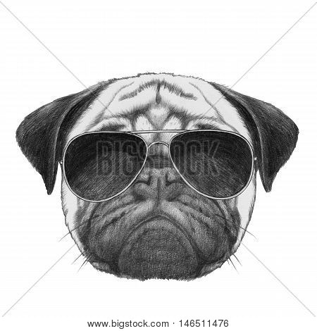 Original drawing  of Pug Dog with sunglasses.  Isolated on white background