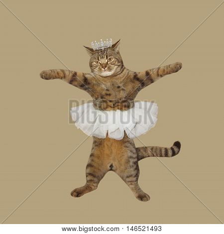 A cat looks like a prima ballet dancer. It's wearing a skirt and crown. The beige background.
