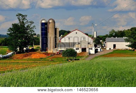 Lancaster County Pennsylvania - June 6 2015: Fields of wheat and an Amish farm with two large distinctive silos *