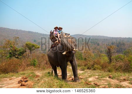 Couple of tourists enjoying elephant ride in Chian Mai Thailand. Horizontal shot