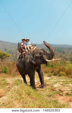 Couple of tourists enjoying elephant ride in Chian Mai Thailand. Vertical shot