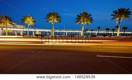 Palm trees along a road in Biloxi Mississippi at night