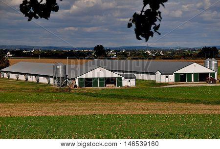 Lancaster County Pennsylvania - October 16 2015: Two long barns with metal silos and large exhaust fans at an Amish farm
