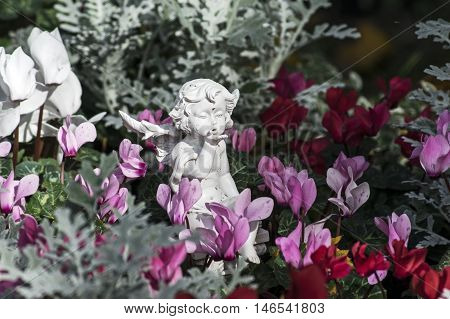 White angel between pink and red flowers