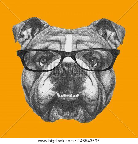 Hand drawn portrait of English Bulldog with glasses. Vector isolated elements.