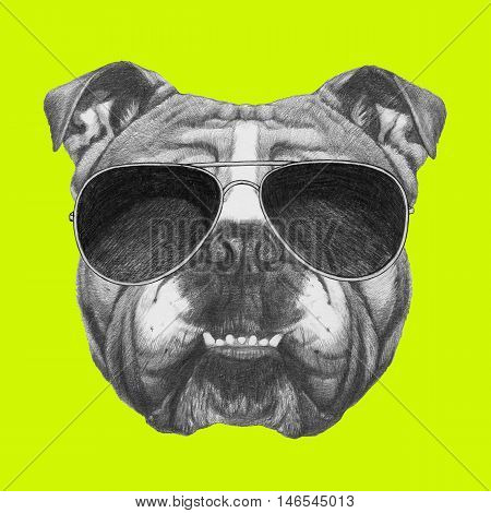 Original drawing of English Bulldog with sunglasses. Isolated on colored background