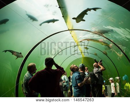 MODRA CZECH REPUBLIC - MAY 21 2016: Under water glass tunnel in botanical and freshwater exhibits Living Water - Modra on May 21 2016 South Moravia Region Czech republic