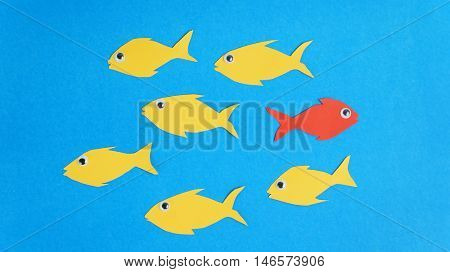 One fish swim in different direction, dare to be different concept