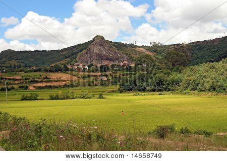 Malagasy Countryside