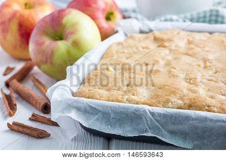 Homemade blondie (blonde) brownies apple cake in baking dish horizontal