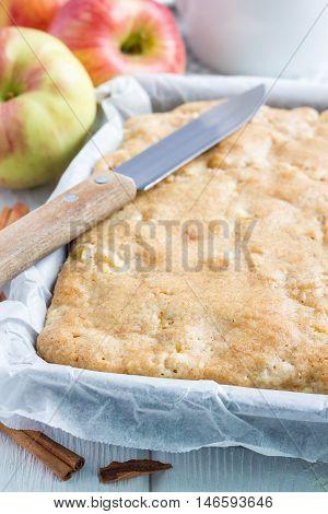 Homemade blondie (blonde) brownies apple cake in baking dish vertical