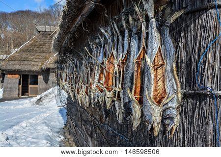 Ainu's hut or fisherman's hut at Hokkaido island
