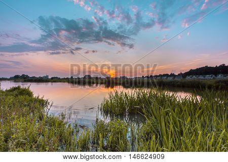 Rhine River Forelands
