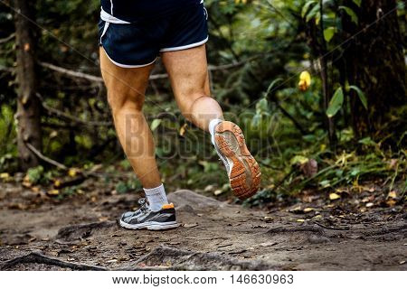 running marathon runner in woods over tree roots. back sole of running shoes