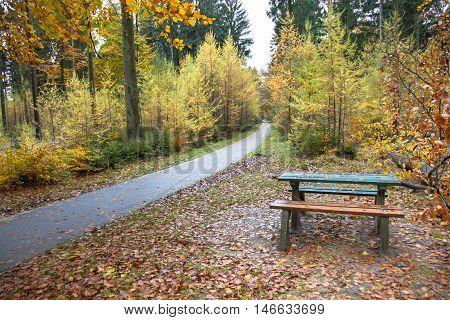 Autumn Picknick