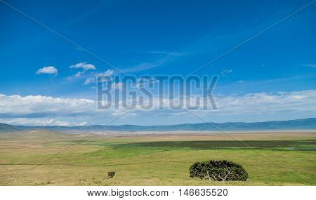 The Ngorongoro Conservation Area (NCA) is a conservation area and a UNESCO World Heritage Site located 180 km west of Arusha in the Crater Highlands area of Tanzania.