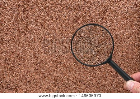 Man studies the flax seeds through a magnifying glass top view