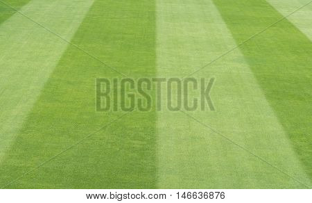 Greensward field background and wallpaper, football background