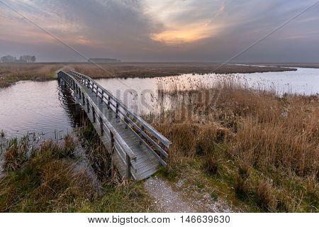 Wooden Swamp Bridge